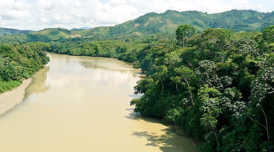 FARC impulsará la defensa del medioambiente en Colombia