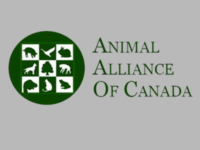 Animal Alliance wants more transparency with Cranbrook deer culls