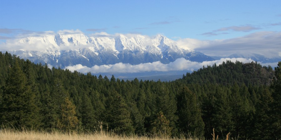 Environment Canada says Spring has sprung in East Kootenay