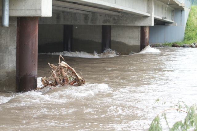 Warm temperatures could cause flooding in East Kootenay: Environment Canada
