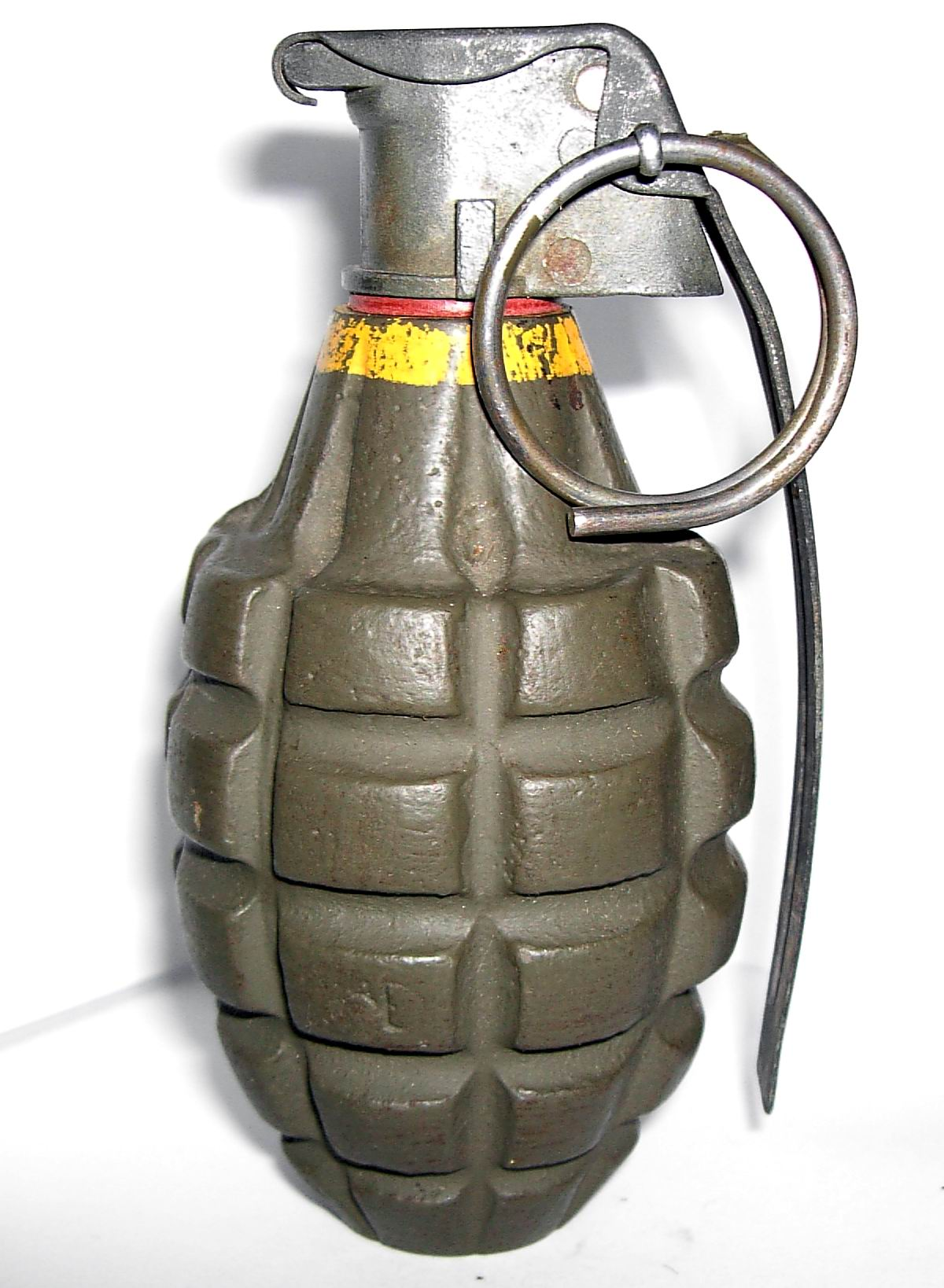 Army called into Fernie after man digs up grenade