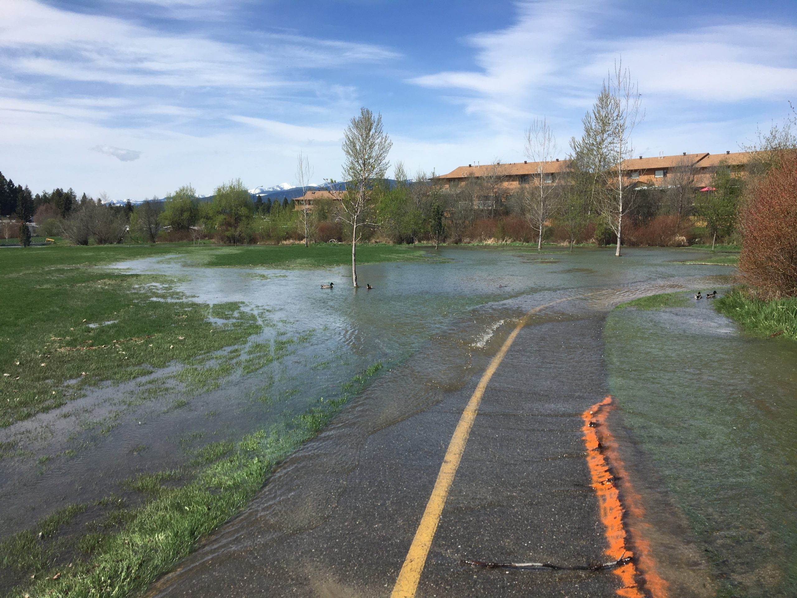 RDEK working with Cranbrook to manage flooding concerns