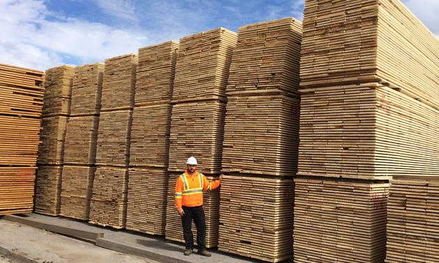 Local lumber mill unsure what's ahead for forestry industry