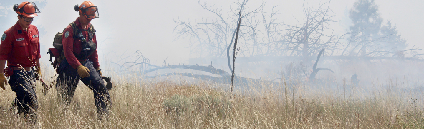 Kimberley seeking over $314K for wildfire prevention work