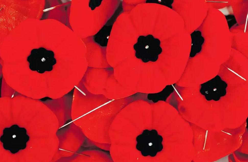 Cranbrook Legion expecting $50k in poppy donations