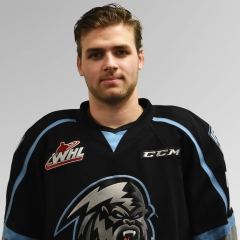Former ICE F Baer joins ECHL's Rapid City Rush