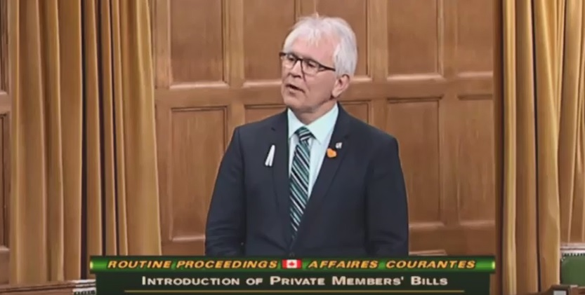 MP Stetski sees pros and cons in Liberal budget