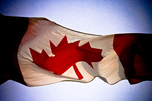 Canadian's have more of these than American's!