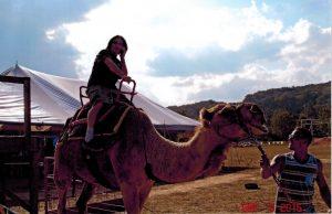 steve-on-camel-2