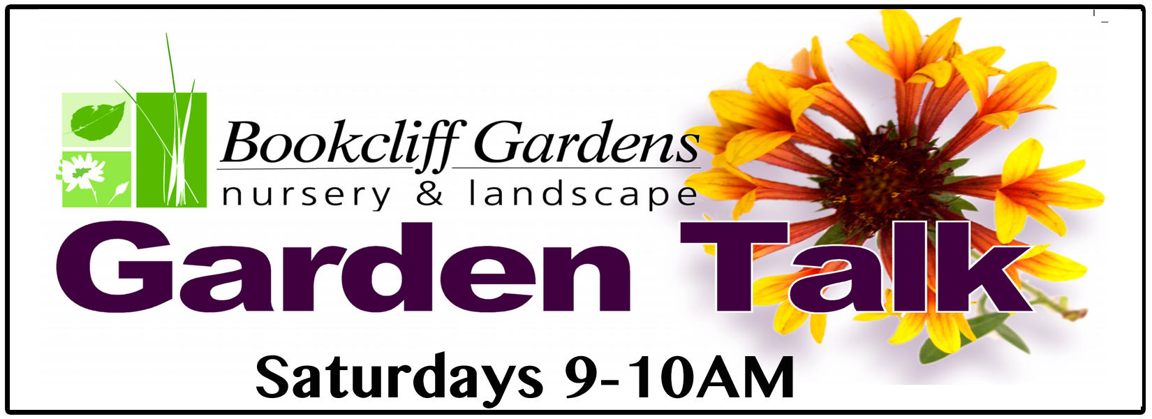 Garden Talk With Dennis Hill