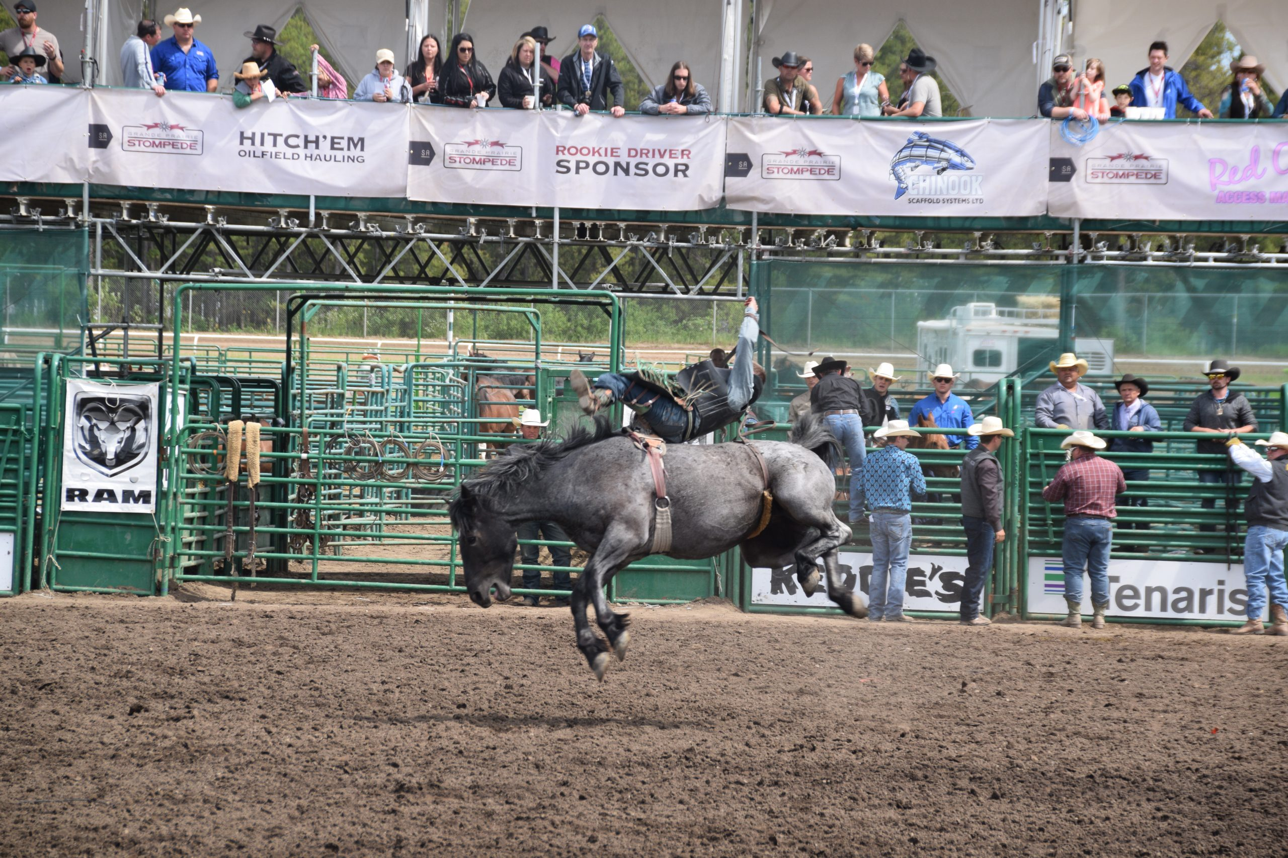 Several leader changes at Stompede rodeo: Worsley cowboy ready to ride again