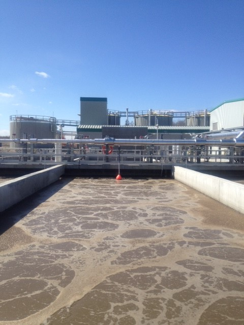 Aquatera celebrates Wastewater Treatment Plant's one year anniversary
