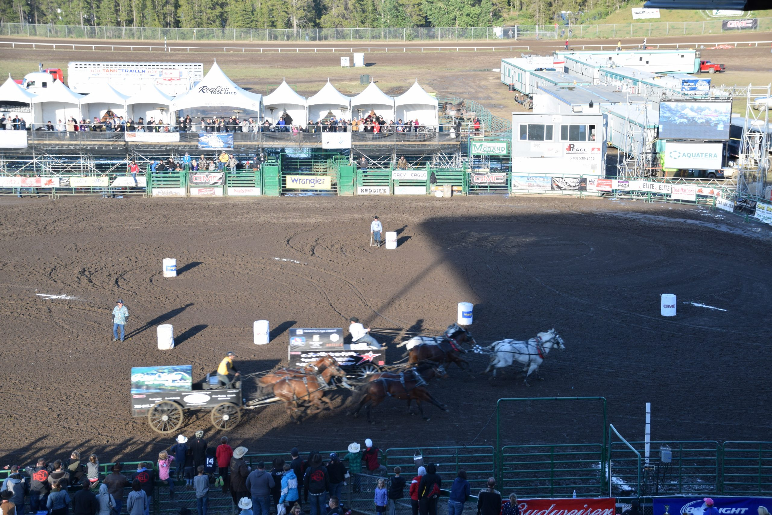 Total bids down at WPCA auctions