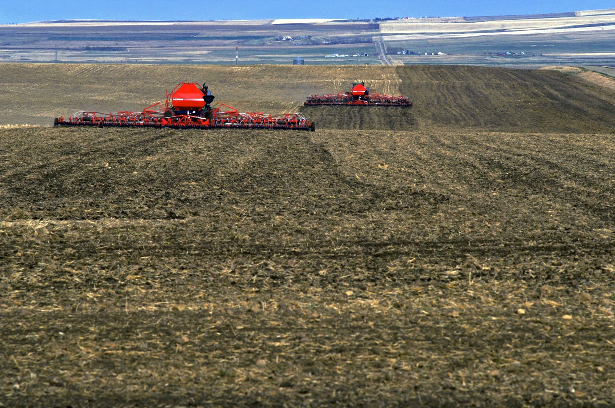 Reason for optimism about this year's crop says Alberta Agriculture specialist