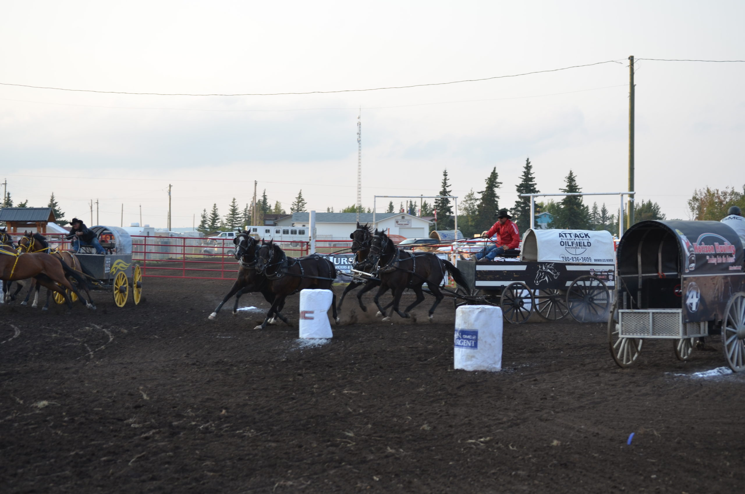 Teepee Creek Stampede: Les Rever leads wagons, pro rodeo starts today