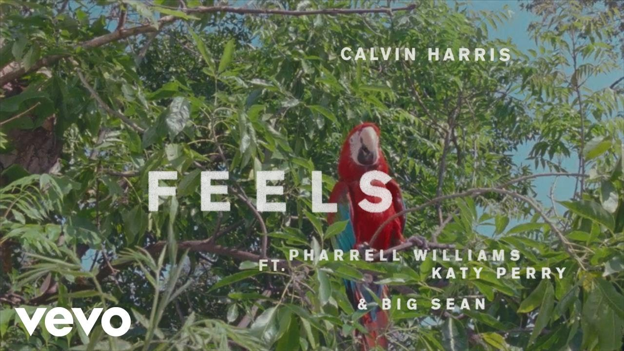 New Music Video from Calvin Harris AND MORE