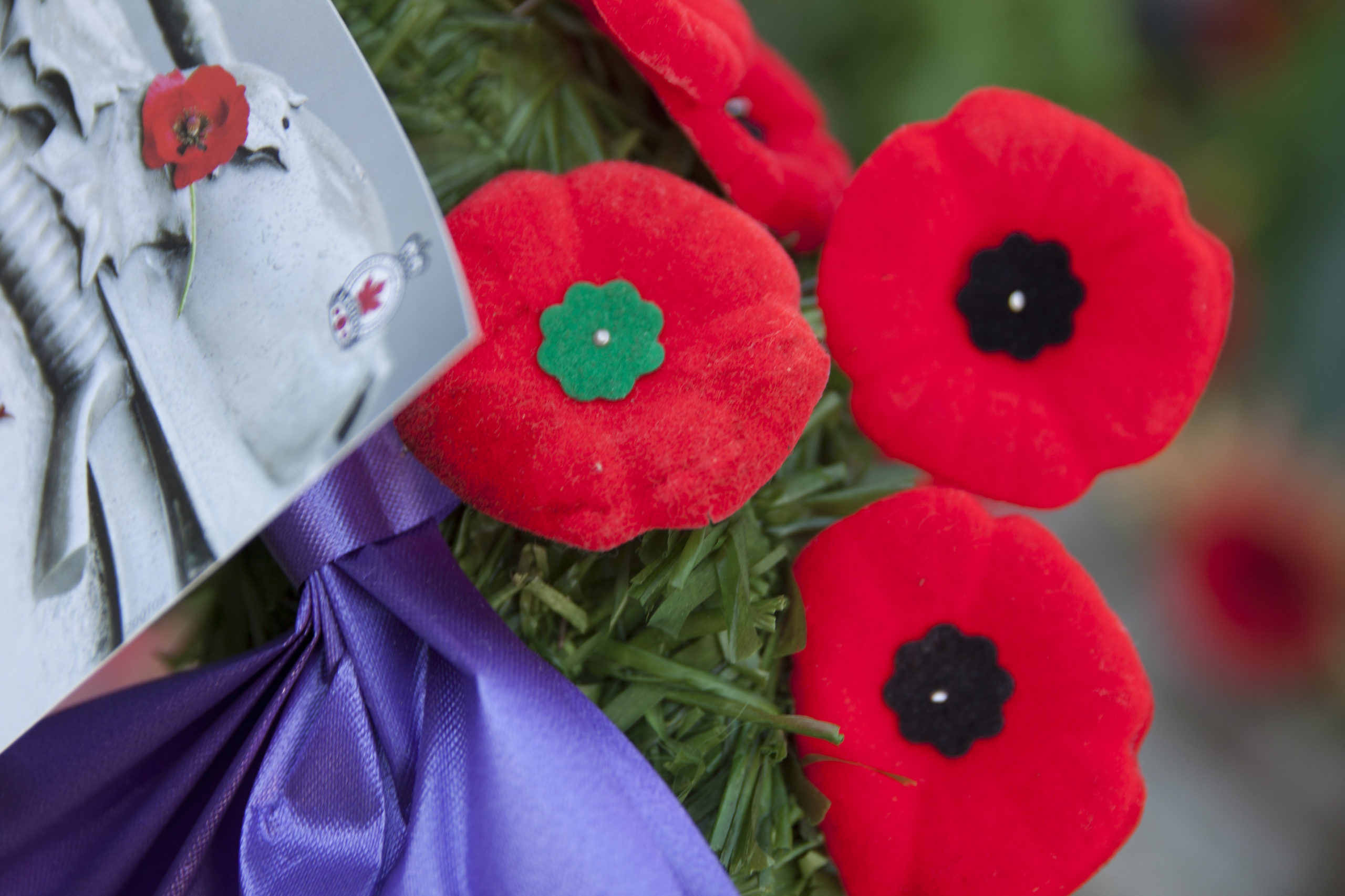 Lest We Forget - Remembrance Day Ceremony and Parade