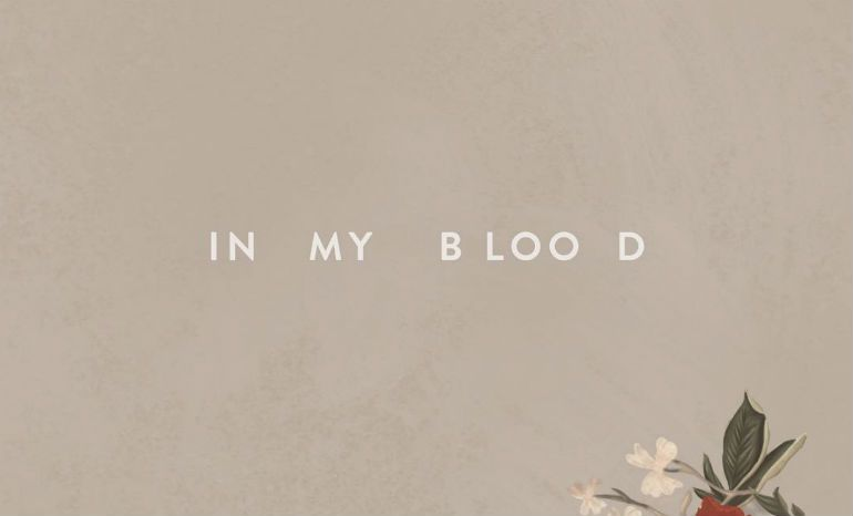 WATCH: Shawn Mendes' In My Blood Music Video