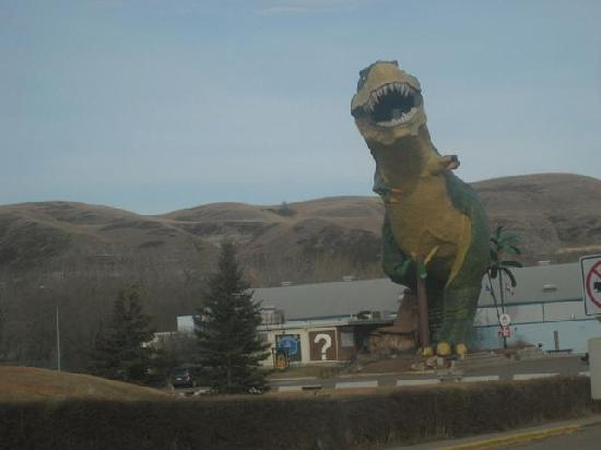 REGISTRATIONS COMING IN FOR DINOSAUR VALLEY HALF MARATHON