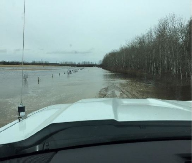 DROUGHT AND RAIN----THATS WHAT ALBERTA IS DEALING WITH THIS YEAR