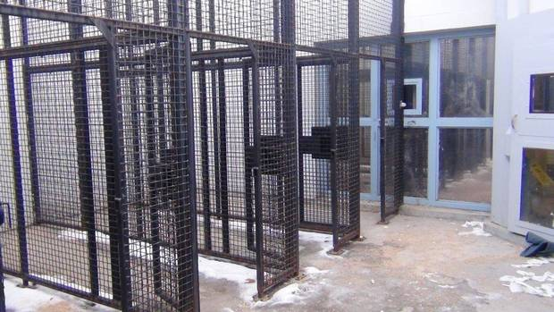 """CAGE-LIKE"" EXERCISE PENS REMOVED AT THE EDMONTON MAX"