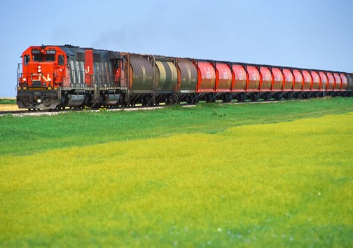 CN MOVES RECORD GRAIN SHIPMENT