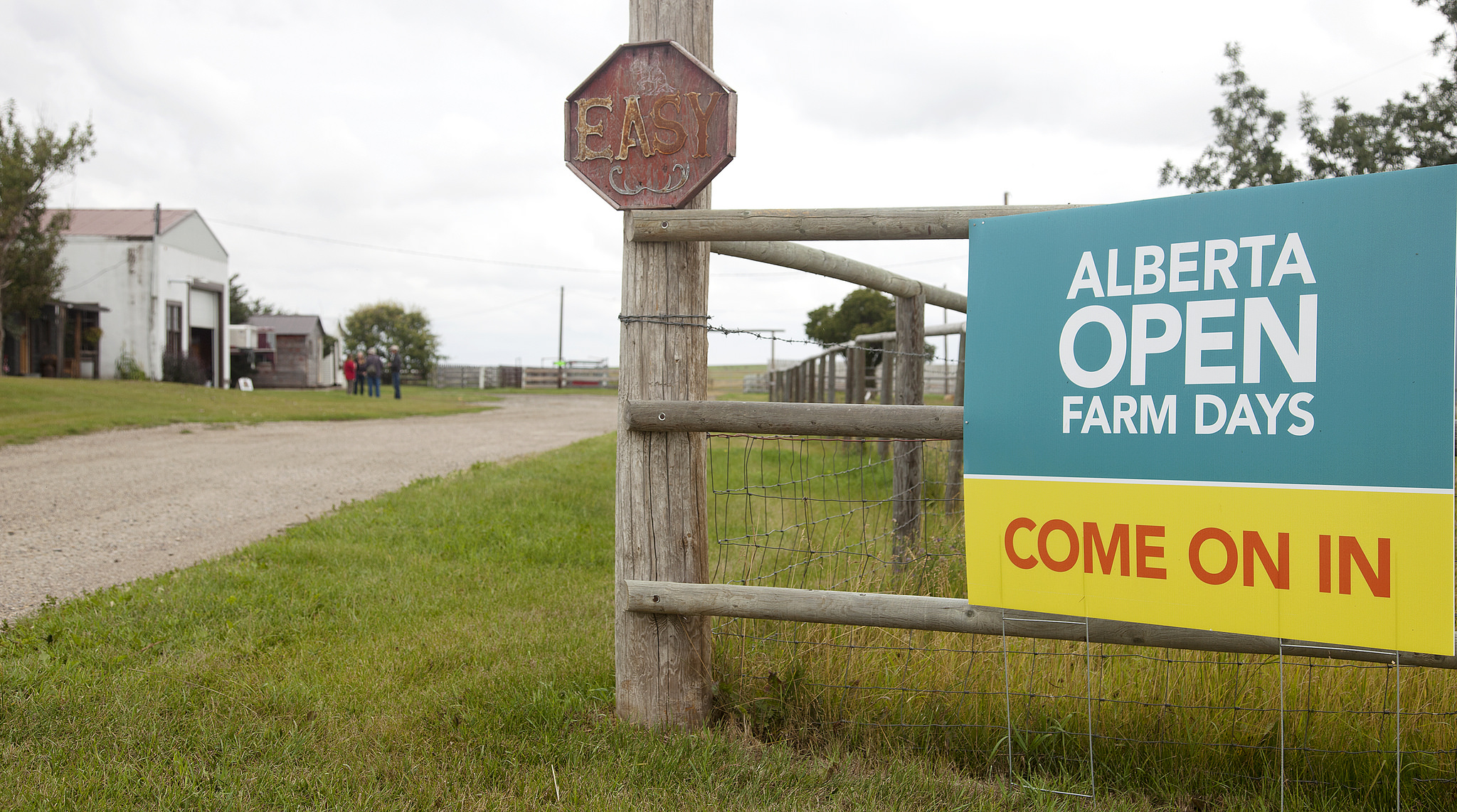 OPEN FARM DAYS THIS WEEKEND