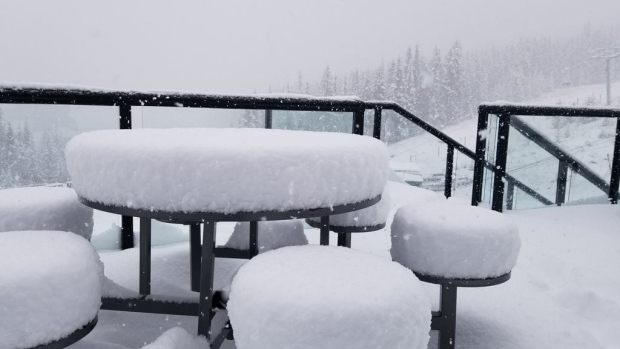 WHOLE LOTTA SNOW IN SOME PARTS OF ALBERTA THIS WEEK