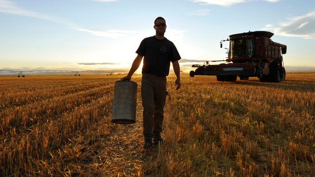 NEW EMPLOYMENT STANDARDS FOR FARMS AND RANCHES
