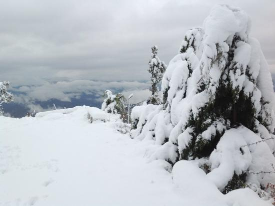 LET IT SNOW LET IT SNOW LET IT SNOW.....IN SOUTHERN ALBERTA