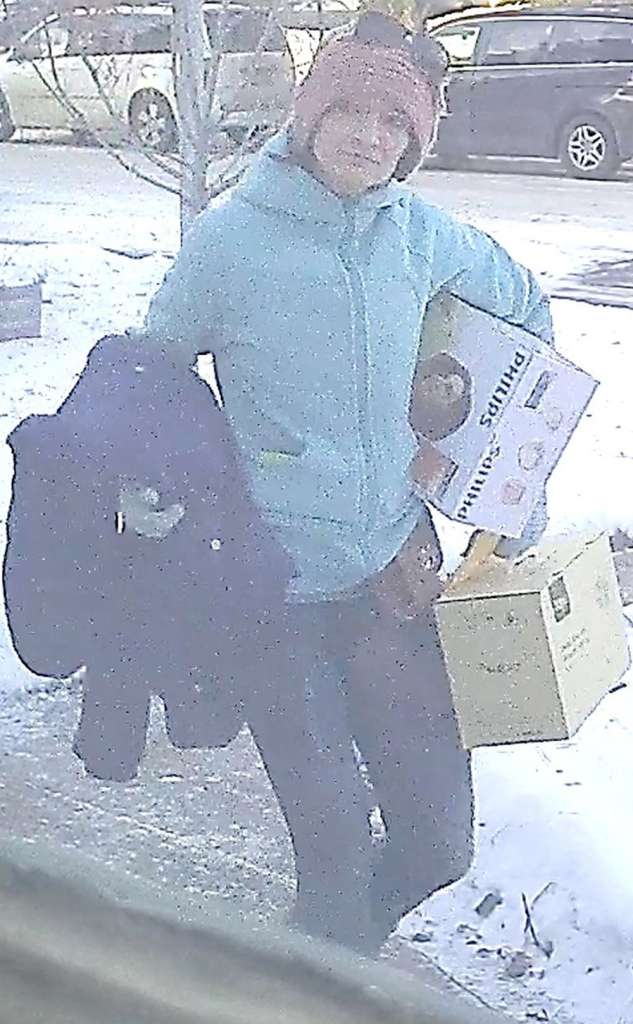 SUSPECTED PARCEL THIEVES