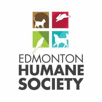 EDMONTON HUMANE SOCIETY SEIZES LARGE NUMBER OF ANIMALS FROM WEM PET STORE