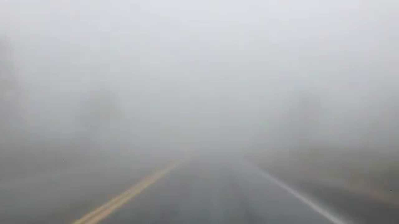 FOGGY IN EAST CENTRAL ALBERTA THIS MORNING