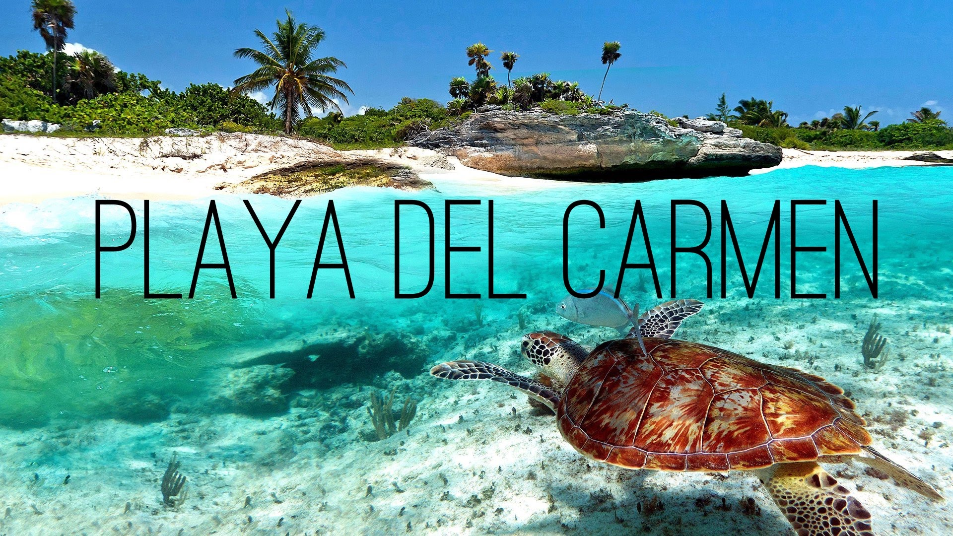 WARNING STILL IN EFFECT FOR CANADIANS HEADING TO PLAYA DEL CARMEN