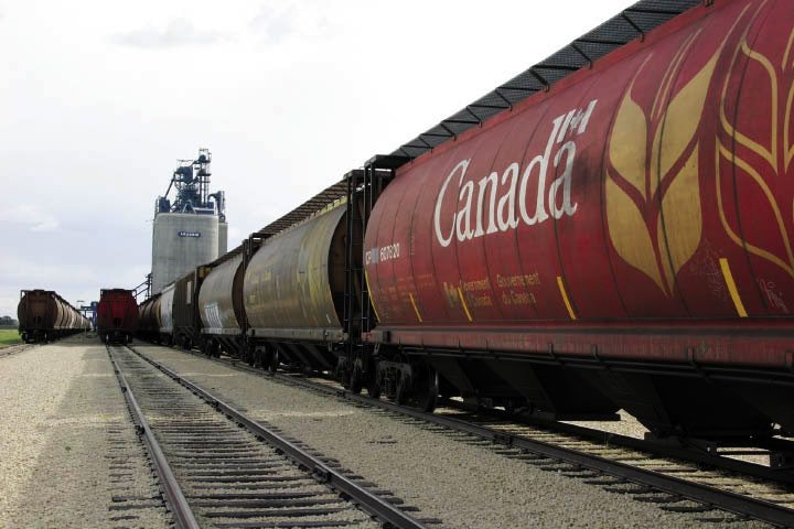 CN SAYS GRAIN IS ON THE MOVE TO PORT