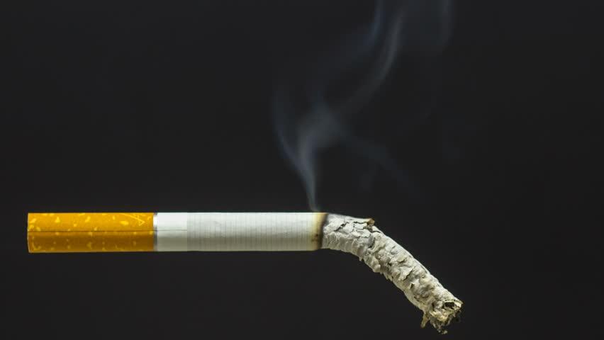 WEST EDMONTON HOUSE FIRE CAUSED BY CARELESS SMOKING