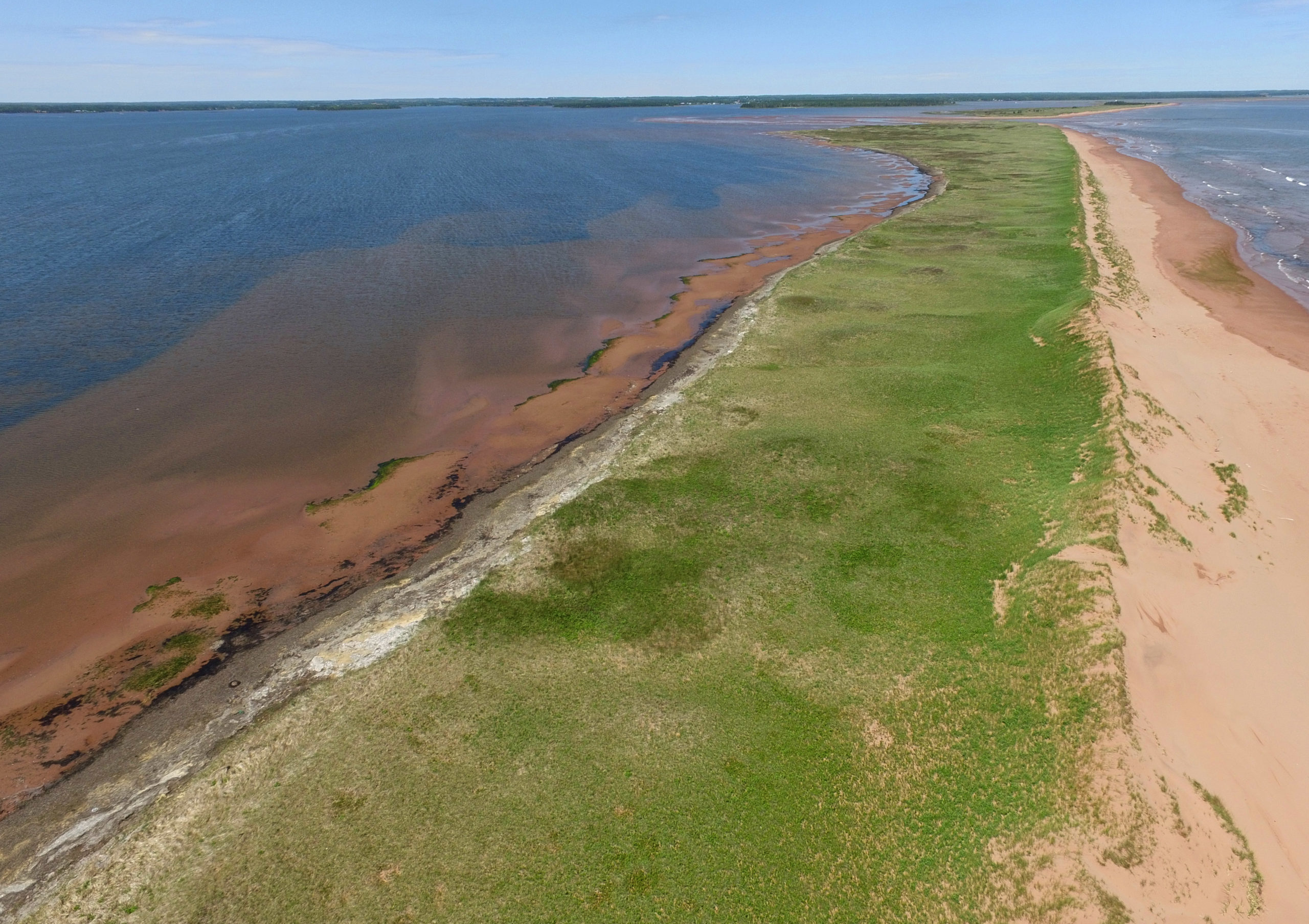 Nature Conservancy of Canada conserves a section of Cascumpec Sandhills
