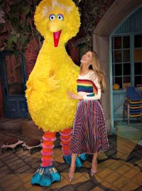 Blake Lively Was Once Compared To Big Bird
