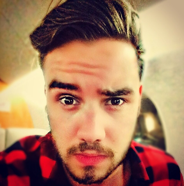 Liam Payne Does Not Like Harry Styles' Music