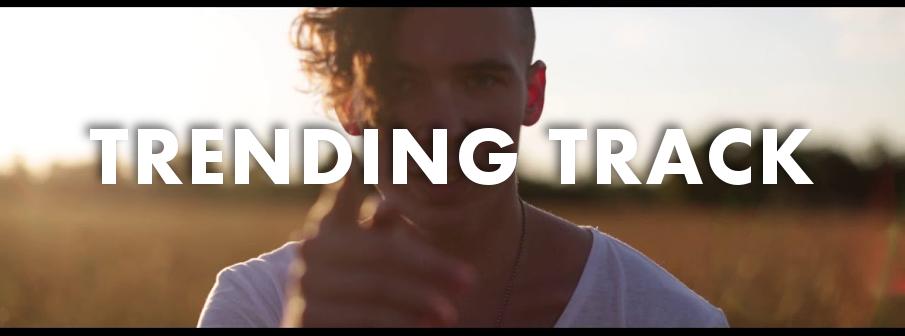 Trending Track - BRDGS - In The Wild