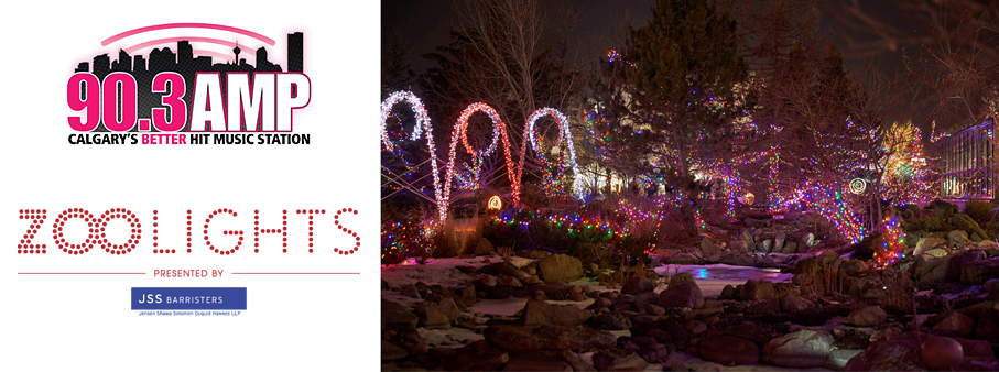 Win your way to ZOOLIGHTS